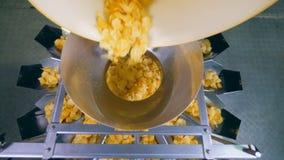Vista superior de las patatas a la inglesa que pasan a través de la máquina de la distribución almacen de metraje de vídeo
