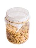 Vista superior de lentilhas emergentes embebidas Foto de Stock Royalty Free