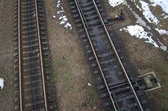 Vista superior de trilhas de estrada de ferro Imagem de Stock Royalty Free