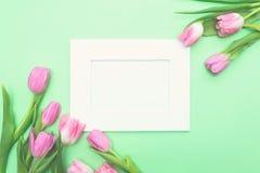 Vista superior de tulipanes y del bastidor rosados de la foto en fondo verde claro con el espacio de la copia Imagen de archivo libre de regalías