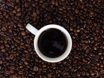 Vista superior de um copo branco do café escuro no fundo dos feijões de café fotografia de stock