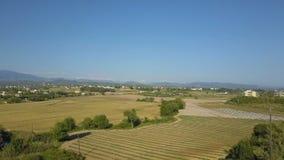 Vista superior de un campo y de árboles El abejón cae abajo En el horizonte que pasa los coches metrajes