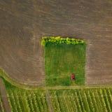 Vista superior de un coche en un camino de tierra en un campo tratado Imagen de archivo libre de regalías