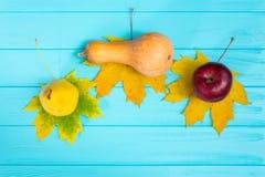 Vista superior de una manzana, de una pera y de la calabaza mintiendo en las hojas en azul Imágenes de archivo libres de regalías