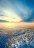 Vista superior del bosque del invierno Imágenes de archivo libres de regalías