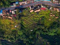 Vista superior del camino que pasa a través de los campos del pueblo y del arroz fotos de archivo libres de regalías