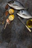 Vista superior del dorado de los pescados frescos Fotografía de archivo libre de regalías