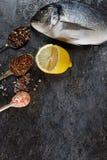 Vista superior del dorado de los pescados frescos Foto de archivo libre de regalías