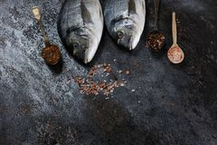 Vista superior del dorado de los pescados frescos Fotografía de archivo