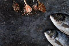 Vista superior del dorado de los pescados frescos Foto de archivo