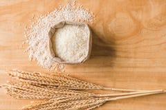 Vista superior del grano crudo del arroz y de la planta de arroz seca en fondo de madera de la tabla Imagen de archivo libre de regalías