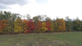 Vista superior del paisaje de Rusia central con los árboles que se cubren con follaje del otoño almacen de metraje de vídeo