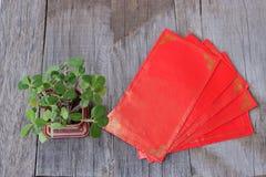 Vista superior del paquete rojo del sobre o de la pata del ANG y milli del euforbio en viejo fondo de madera Concepto chino del f Foto de archivo libre de regalías