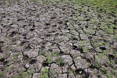 Vista superior del suelo agrietado seco con la hierba imagenes de archivo