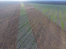 Vista superior del tractor que ara el campo disking el suelo Cultivo de suelo después de las gaviotas de la cosecha que vuelan so Fotos de archivo