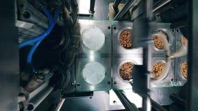 Vista superior do transporte que cobre placas plásticas com os pães ralados em uma fábrica do alimento video estoque