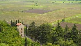 Vista superior dos vinhedos em Geórgia vídeos de arquivo