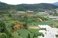 Vista superior na cidade Vietnam do dalat Fotos de Stock Royalty Free