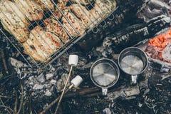Vista superior na fogueira com carne da galinha Fotografia de Stock