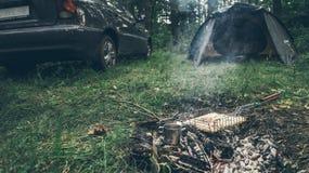 Vista superior na fogueira com carne da galinha Fotos de Stock