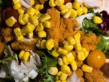 Vista superior na tortilha caseiro da galinha e dos vegetais imagem de stock