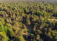 Vista superior no litoral da floresta ao mar fotos de stock royalty free