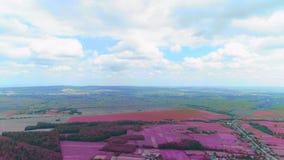 Vista superior O zangão aéreo está voando sobre a vila pitoresca 4K filme