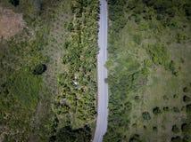 Vista superiore aerea di vista superiore della strada Fotografia Stock Libera da Diritti
