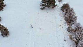 Vista superiore aerea di un fiume congelato fra la neve Paesaggio aereo di inverno Tiro dell'elicottero archivi video