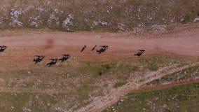 Vista superiore aerea: gruppo di persone i cavalli di giro sulla valle della montagna il giorno di estate soleggiato video d archivio
