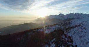 Vista superiore aerea laterale sopra la montagna di inverno e la foresta nevose di legni al tramonto o all'alba Sole di penombra  archivi video