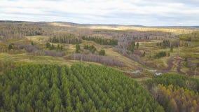 Vista superiore aerea, paesaggio di autunno della clip selvaggia della foresta Vista dell'angolo alto di una depressione della st archivi video