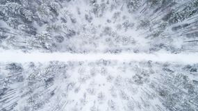 Vista superiore alla strada sdrucciolevole invernale che passa attraverso la foresta di conifere innevata immagini stock