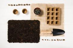 Vista superiore degli strumenti di giardinaggio sul fondo di legno bianco delle plance Fotografie Stock Libere da Diritti