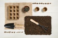 Vista superiore degli strumenti di giardinaggio sul fondo di legno bianco delle plance Immagini Stock Libere da Diritti