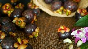 Vista superiore dei mangostani raccolti deliziosi freschi sulla tavola di legno Frutta porpora organica tailandese nel canestro stock footage