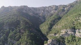 Vista superiore dei pendii verdi della cima della montagna coperti di abete rosso e di alberi colpo Paesaggio della montagna dell stock footage