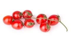 Vista superiore dei pomodori ciliegia Fotografie Stock