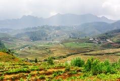 Vista superiore dei terrazzi del riso agli altopiani PA del Sa, Vietnam Fotografia Stock Libera da Diritti