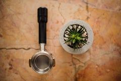 Vista superiore del compressore del caffè e del vaso del calcestruzzo con una pianta dell'aloe Immagini Stock Libere da Diritti