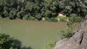 Vista superiore del fiume e della foresta video d archivio