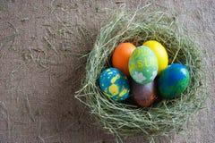 Vista superiore del nido con le uova Fotografie Stock
