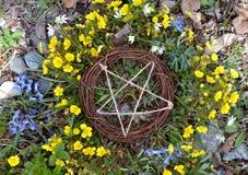 Vista superiore del pentagramma di legno in erba e fiori immagini stock