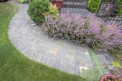 Vista superiore del percorso di Front Yard Garden Curve Paver fotografie stock libere da diritti