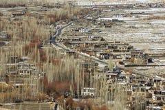 Vista superiore del ricciolo nero curvo del pioppo e della strada in Leh immagini stock