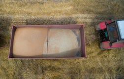 Vista superiore del rimorchio con i grani raccolti del grano Fotografie Stock