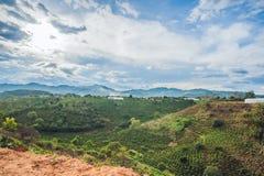 Vista superiore del riso e della capanna a terrazze di agricoltura sulla collina Veitnam Immagine Stock Libera da Diritti