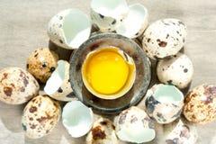Vista superiore del tuorlo giallo dell'uovo di quaglia eggshell All'interno primo piano fotografia stock libera da diritti