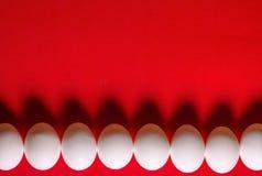 Vista superiore della fila dell'uovo bianco su rosso Fotografia Stock