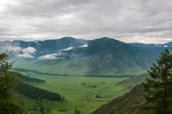 Vista superiore della nebbia della strada dei prati della foresta della valle della montagna Fotografia Stock